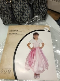 Used Princess Dress for Halloween Toronto, M1J 1G6