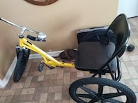adult's black and yellow trike