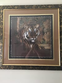 Lion and tiger pictures make offer I payed a lot for these Louisville, 40229