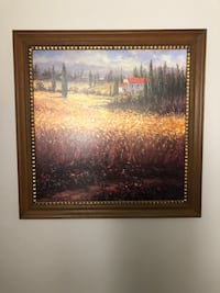 Beautiful framed picture Lake Forest, 92610
