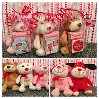 Personalized Valentine Plush Knoxville, 37921