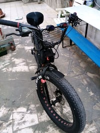 Carraro fat Bike
