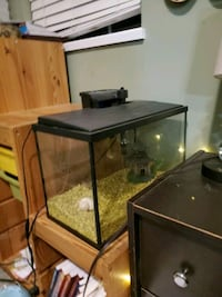 Fish tank with filter and cartridge replacements!Accessories included!