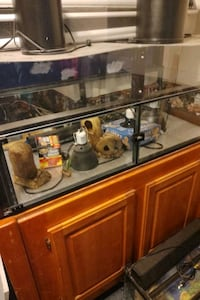 Reptile custom cage lots of stuff, lighting,uvb, stand, extras, 500+