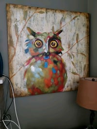 Colorful Owl Canvas Temple Hills