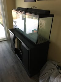 55 gallon fish tank, stand, filter, and complete setup for fish. Rockville, 20852