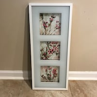 Floral 3 painting frame BRAND NEW Springfield, 22150