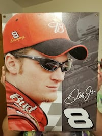 Dale Earnhardt Jr #8 picture South Charleston, 25303