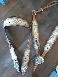 Cowhide and green concho bridle+breastcollar Wooster, 44691