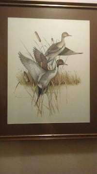 Duck painting in frame