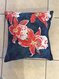 Decorative indoor/outdoor pillow. I never used it outside. Lady Lake, 32159