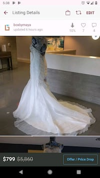Jasmine Collection ivory and silver mermaid gown Alexandria, 22304