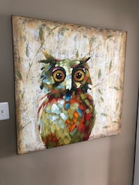 40 x 40 owl canvas print Dumfries, 22026