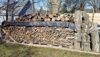 Seasoned Cords of Wood For Sale - Best Deal - Truc