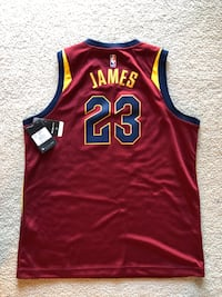 Lebron jersey Sterling, 20166