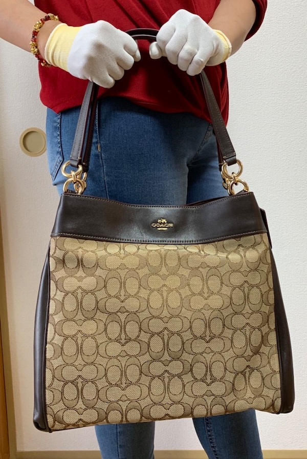 Brand New Coach Bag with no inclusions