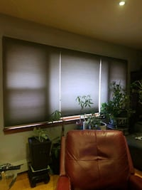Blinds to go pleated cellular shades Garfield, 07026