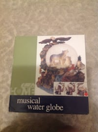 NEW! Musical Water Globe Toronto, M4H