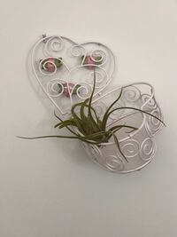 Wire heart boxes