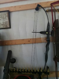 gray compound bow Berryville, 22611