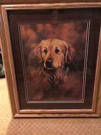 adult golden retriever drawing with brown wooden frame Clayton, 27520