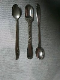 Silver spoons Tampa, 33604