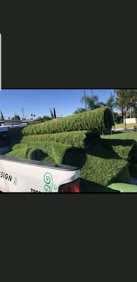 Artificial grass/turf#  West Covina, 91790