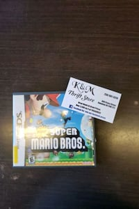 Super Mario Brothers DS game