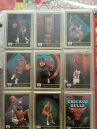 Bulls Championship Dynasty Collection Edcouch, 78538