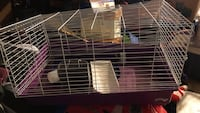 Small animal cage with second level attachment, water bottle, and food dish. Dale City, 22193