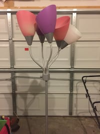 Black metal lamp with pink lamp shades  39 mi