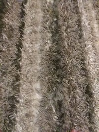 brown and gray fur textile Washington, 20011