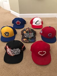 Fitted and SnapBack hat lot Plainfield, 60586