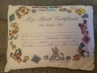 Birth certificate looney tunes pillow Seaford, 19973