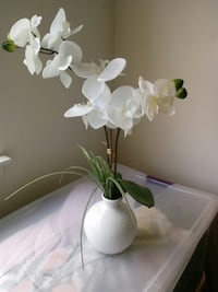 Faux Orchids in Vase