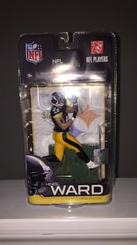 Steelers Collectible  Lutz, 33558