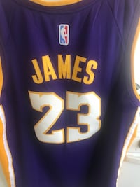 LeBron James purple and gold lakers jersey  Tucson, 85712
