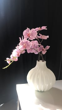 Faux Orchid in Glass Vase Dallas, 75207