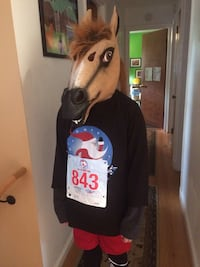 HORSE HEAD Halloween Costume Mask  Great Falls, 22066