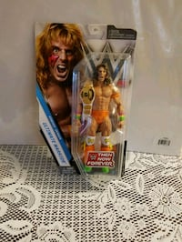 WWE action figure pack Mississauga