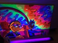 Custom Rick and Morty Blacklight Canvas Painting Canyon Lake, 92587