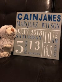 Baby birth announcement canvas  Coral Springs
