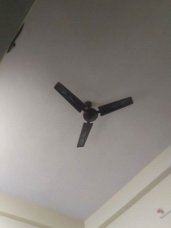 black 3-bladed ceiling fan