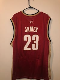 red and white Nike Lebron James 23 jersey Dover, 19904
