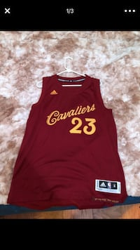 Christmas Day LeBron 23 jersey 2016 Parma Heights, 44130