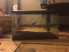 10 gallon fish tank with led lights want 25 or best offer
