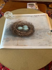 New Rustic Bird Nest poster art not framed new Bel Air, 21014