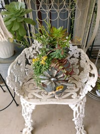Beautiful galvanized container with live succulent