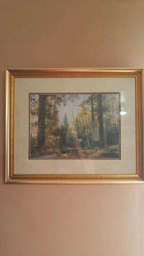 Beautifully framed picture of trees 1a0d7d9f-badd-4740-abd0-ff312066206c