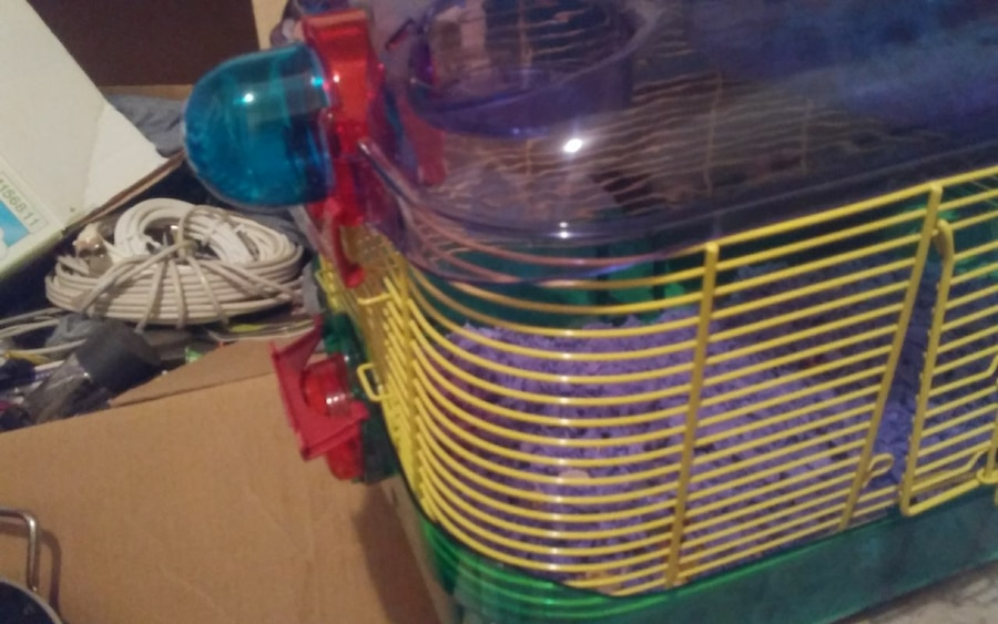 Multicolored Mice/Hamster/Small Pet Cage - Ontario